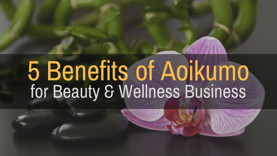 5 Benefits of Aoikumo Software for Beauty and Wellness Businesses